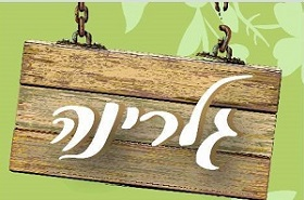 355_logo